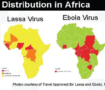 Lassa-fever-vs-Ebola.png