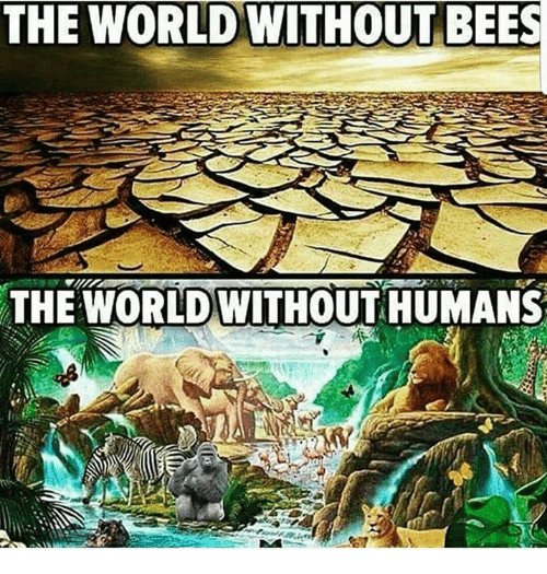 the-world-without-bees-the-world-without-humans-a-4960055.png