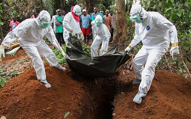 Ebola-Virus-2.jpg