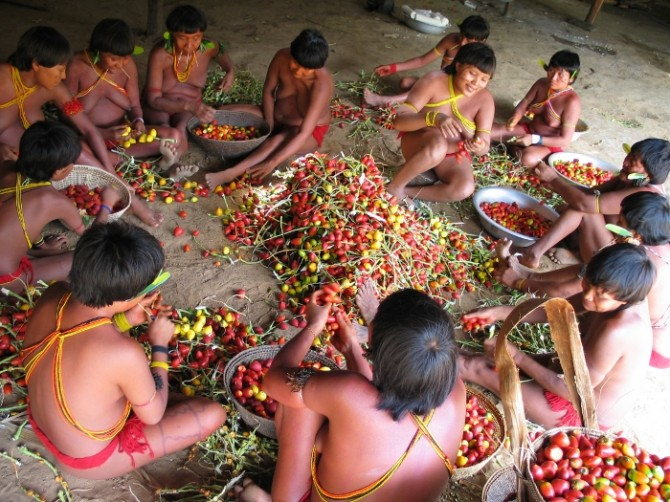 Tribes-Yanomami-fruits-670x502.jpg
