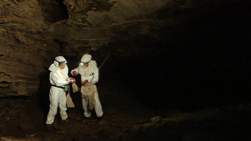 160822141058-virus-hunters-in-grootroom-cave-super-169.jpg