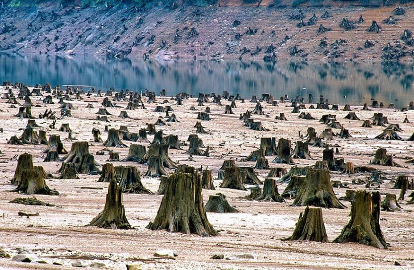 20-shocking-photos-of-humans-slowly-destroying-planet-earth-12