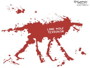 lone-wolf-terrorism-anderson
