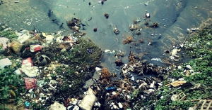 The-amount-of-pollution-in-our-ocean-waters-is-alarming_-1